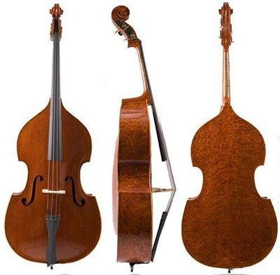 提琴家族的成员有哪些?