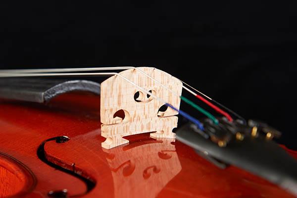 成人自学小提琴容易吗?
