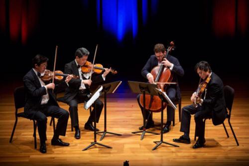大提琴低音提琴傻傻分不清?