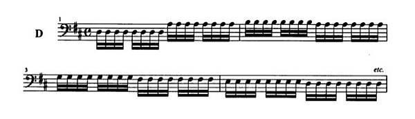 变奏曲D: